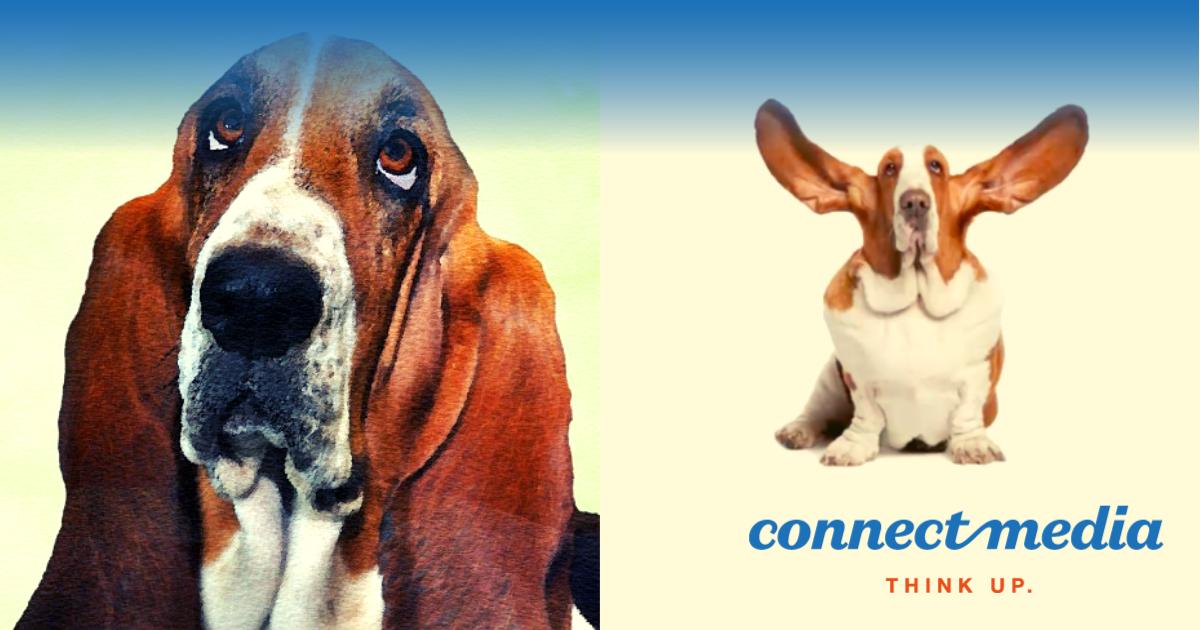 Comunicarea eficientă: plus cu plus fac plus